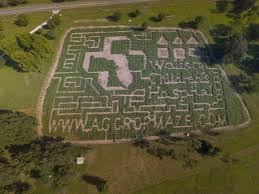 Pumpkin Patch And Corn Maze Milton Fl by 12 Awesome Corn Mazes In Florida You Have To Do This Fall