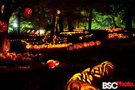 Great Pumpkin Blaze by Pumpkin Blaze U2013 Croton On Hudson U2013 Bsc Studios