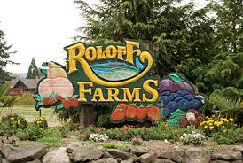 Roloffs Pumpkin Patch In Hillsboro Or by Pumpkin Patches Roloff Farms Homebased Portland