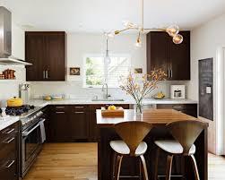 dark cabinets white appliances houzz