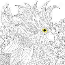 Perroquet Cacatoès Pour Cahier De Coloriage Anti Stress Coloriage
