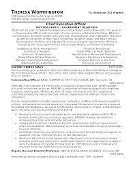Cv Veteran Militaire Free Military Resume Templates Format For