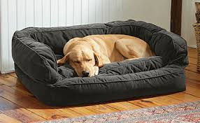 dog bed with bolster lounger deep dish dog bed orvis uk