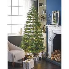 4 Ft Pre Lit Christmas Tree Asda by Buy 6 5ft Luxury Pre Lit Regency Fir Christmas Tree 150 White