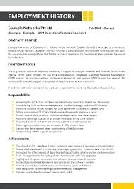 Information Technology Resume Examples Curriculum Vitae Sample