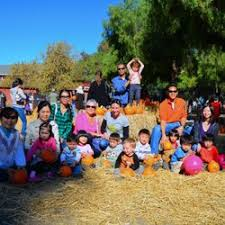 Pumpkin Patch Daycare Ct by Water And Sunshine Family Childcare And Preschool 41 Photos U0026 15