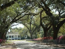 Avenue of the Oaks Spring Hill College Mobile AL Where our