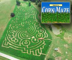 Closest Pumpkin Patch To Marietta Ga by It U0027s Time For Corn Mazes And Hayrides Macaroni Kid