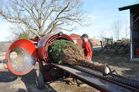 Christmas Tree Baler by Christmas Trees From The Connecticut Hills The Martha Stewart Blog
