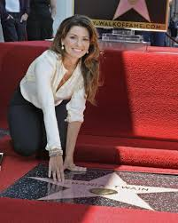 Whose Bed Shania Twain by Shania Twain New Vegas Show New Tv Show New Album A Fall On