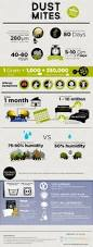 Austin Dustless For Healthier Faster Floor Removal by 693 Best Dust Mite Images On Pinterest Dust Mites Cleaning Tips