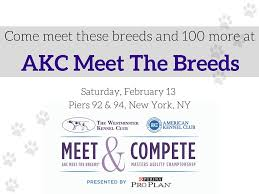 Akc Coupon Code - Best Restaurants South Of Boston Akc Reunite Home Facebook Npr Shop Promo Code Free Shipping Sheboygan Sun 613 Pages 1 32 Text Version Fliphtml5 Uldaseethatiktk Urlscanio Pet Microchip Scanner Universal Handheld Animal Chip Reader Portable Rfid Supports For Iso 411785 Fdxb And Id64 Chewycom Coupon Codes Door Heat Stopper Giant Bicycles Com Fitness Zone Bred With Heart Faqs Owyheestar Weimaraners News Pizza Hut Big Dinner Box Enterprise 20 Aaa