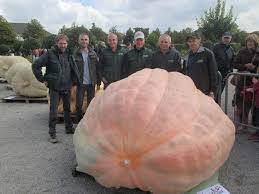 Heaviest Pumpkin Ever by How Do You Breed A 2 624 Pound Pumpkin Popular Science