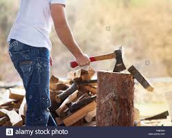 Detail Of Young Man Chopping Wood In His Backyard Stock Photo ... Detail Of Young Man Chopping Wood In His Backyard Stock Photo 6158 Nw Lumberjack Rd Riverdale Mi 48877 Estimate And Home Only Best Budget Tree Service Changs Changes Our Is One Loading Wood Logs To Wheelbarrow Video Landscape Lumjacklawncare Twitter Amazoncom Camp Chef Overthefire Grill With Sturdy The Urban Sturgeon County Bon Accord Gibbons Bash Themed Cookies Pinterest Inside The Quest To Become Greatest World Cadian Show Epcot Youtube