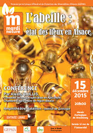 chambre agriculture alsace conférence nature 15 déc 2015 l abeille état des lieux en