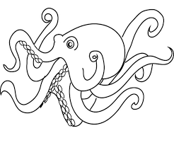 Animal Octopus Coloring Page