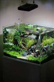 Cuisine: Aquascaping Interior Design The Unique Of Aquascaping ... Cuisine Perfect Aquascape Aquarium Designs Ideas With Hd Backyard Design Group Hlight And Shadow Design For Your St Charles Il Aqua We Share Your Passion For Success Classic Series Grande Skimmer Aquascapes Amazoncom 20006 Aquascapepro 100 Submersible Pump Pond Supply Appartment Freshwater Custom 87 Best No Plant Images On Pinterest Ideas