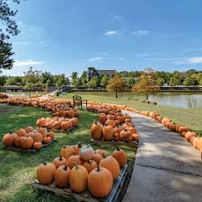 Pumpkin Patch Ct by Home Provenance Realty Group