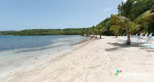curtain bluff antigua oyster nonsuch bay resort antigua and barbuda oyster review