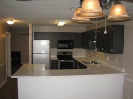 1 Bedroom Apartments In Greenville Nc by Blue Ridge Apartments
