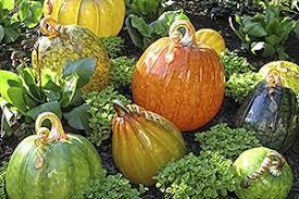 Leeds Pumpkin Patch Columbus Ohio by Pinterest U0027teki 25 U0027den Fazla En Iyi Pumpkin Patch Columbus Ohio