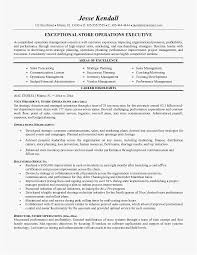 Auto Dealership Sales Manager Resume Free Templates Grocery Store Example Examples Of Resumes Template