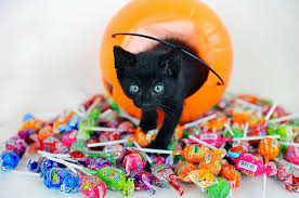 Halloween Candy Tampering News by How To Check Your Kids U0027 Candy For Potential Hazards This Halloween
