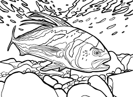 The Game Fish Coloring Book