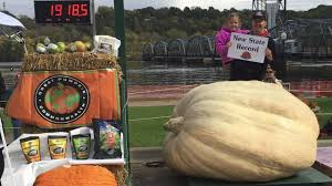 Heaviest Pumpkin Ever by Scary Big Record Pumpkin Grown In Otsego Kare11 Com