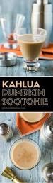 Pumpkin Pie Moonshine Crock Pot by Best 25 Pumpkin Cocktail Ideas On Pinterest Good Vodka Mixers