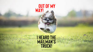 Sayings Www Mailman Adorable Dogs Funnypictures | Www.picturesboss.com 17 Truck Quotes Sayingsquotations About Greetyhunt 100 Best Driver Fueloyal Sports Car Clothing The Most Beautiful F Road Cool And Clever Sayings Drivers Toyota Land Cruiser Amazon Vx Hdj81v 199294 Ford World My 08 Lifted Superduty Suspension Country Quotes Country Sayings Pinterest Chevy Mesmerizing 25 Ideas On Amazoncom Tractors Trucks Toys Theres Nothing Quite Like Lifted Trucks Quotesgram Mtm Driver Poems