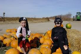Pumpkin Patch Parker County Texas by 10 Great Pumpkin Patches In Colorado
