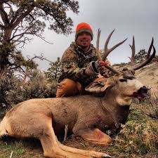 67 best A Love For Hunting Success images on Pinterest