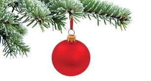 O Tannenbaum A Christmas Tree Primer