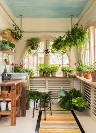 tolle ideen wie pflanzen aufhängen kann