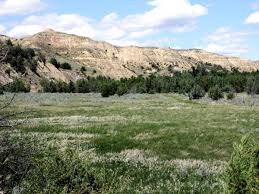 100 Black Hills Trucking Williston Nd Roosevelts Badlands Ranch Faces Potential Threat KUNC