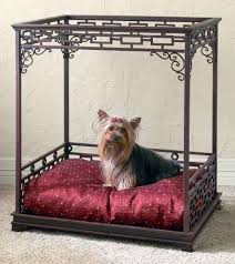 Pampered Pets Bed And Biscuit by Pet Bed Pet Beds Dog Beds And Dog