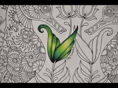 This Video Is About How I Color The Underwater Leaves From Lost Ocean Coloring Book Use Marco Raffine Pencils Have Any Ques