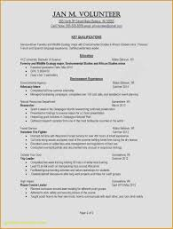 Summary In A Resume Example New Template Entertaining Resumes Skills Examples