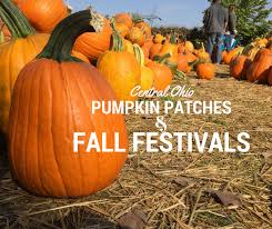 Lawrence Pumpkin Patch by Central Ohio Pumpkin Patches And Fall Festivals What Should We