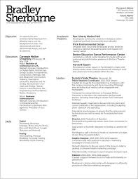 2 Column Resume Template 170239