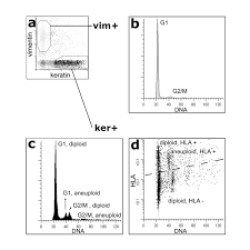 Highresolution Analysis Of HLA Class I Alterations In