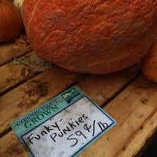Pumpkin Picking In Waterbury Ct by Karabin Farms 55 Photos U0026 13 Reviews Fruits U0026 Veggies 894