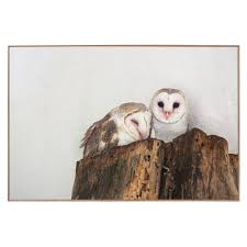 Barn Owls Print   Temple & Webster Photographs Of Barn Owls Leigh Ornithological Society 110317 Greenscape Environmental Owl In Flight Limited Edition Print By Robert E Fuller Designstuff Charming 3 Clotheshopsus Vintage Poster Barn Owl Birds Pinterest Owls Day 207 Katy Lipscomb Online Store Powered Never Lose Hearing Youtube Best 25 Sounds Ideas On Beautiful Its Time To Decorate For Fall Wisdom Art Miss Majewiczs Emporium The Heart Facts Pictures Diet Breeding Habitat Behaviour