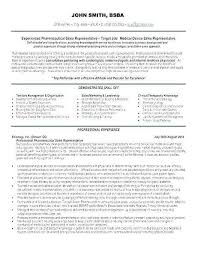 Professional Experience Resume Example Luxury Skills Summary Examples