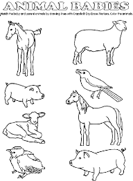 Baby Animal Match Coloring Page