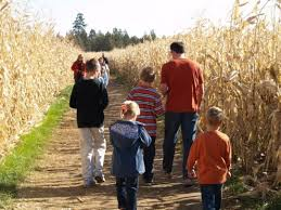 Pumpkin Patch North Bend Oregon by Pumpkin Patches In Central Oregon Hubpages