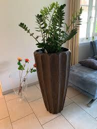 blumentopf pflanzentopf gross holzimitat kaufen auf ricardo