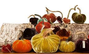 Corona Del Mar Pumpkin Patch by Thanksgiving Corona Del Mar Florist