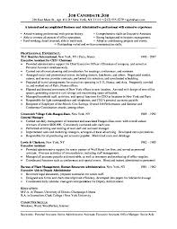 Resume Examples Executive Assistant Sample Skills Administrative